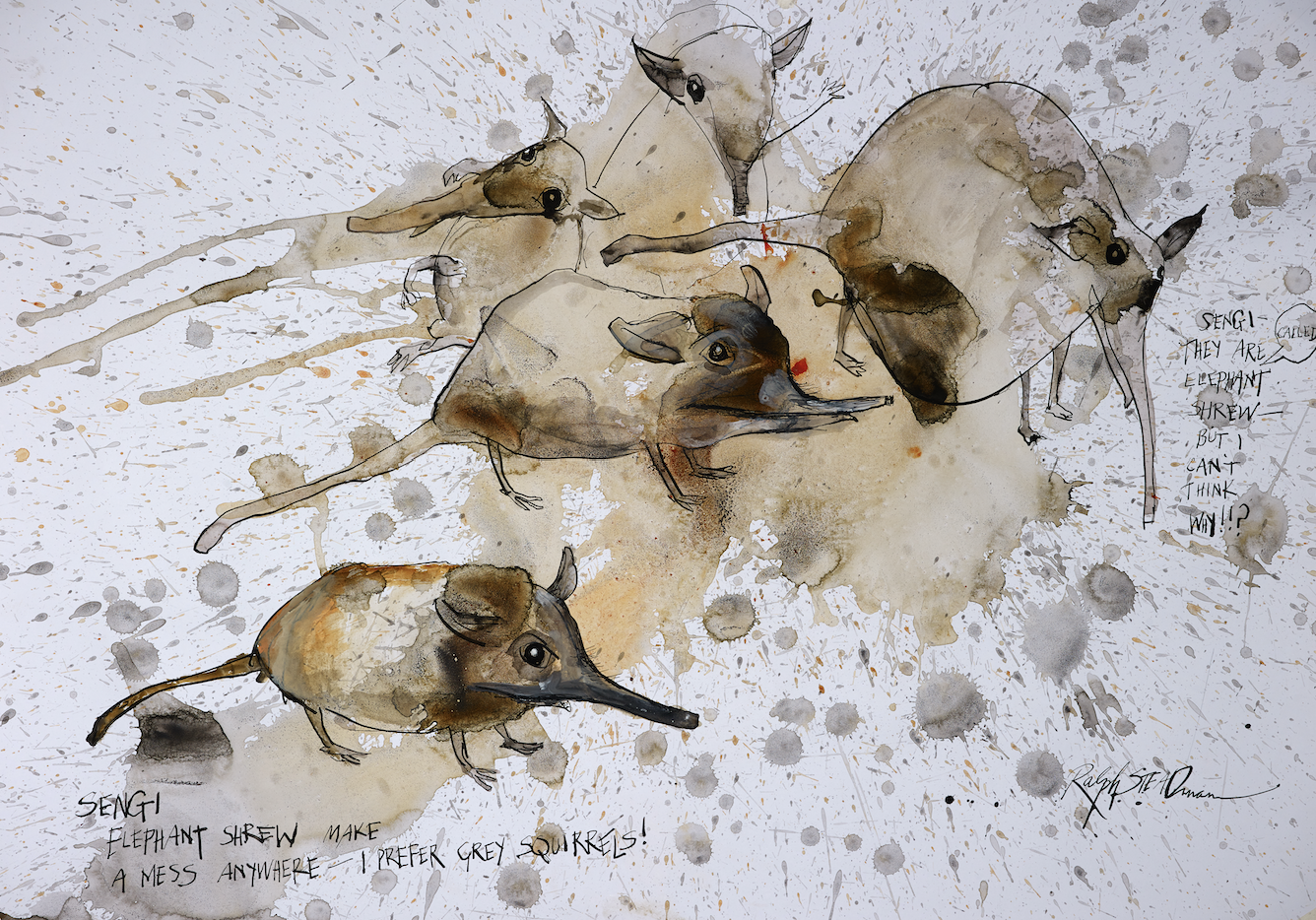 Elephant Shrew from Critical Critters by Ralph Steadman and Ceri Levy